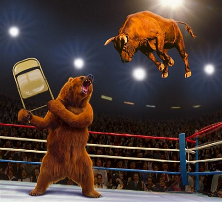 bull wrestling bear